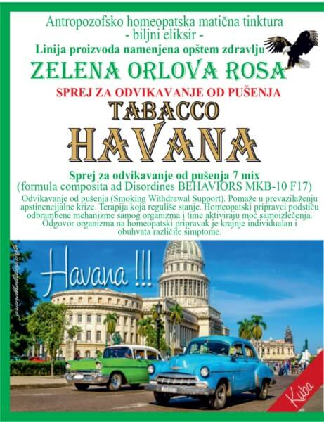 Havana100 1
